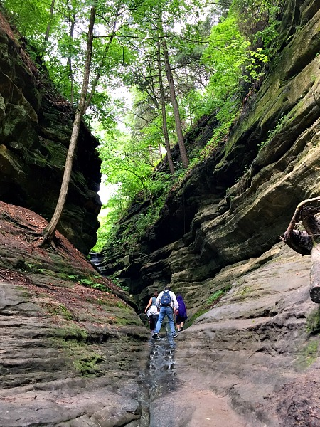 Starved Rock St. Louis Canyon