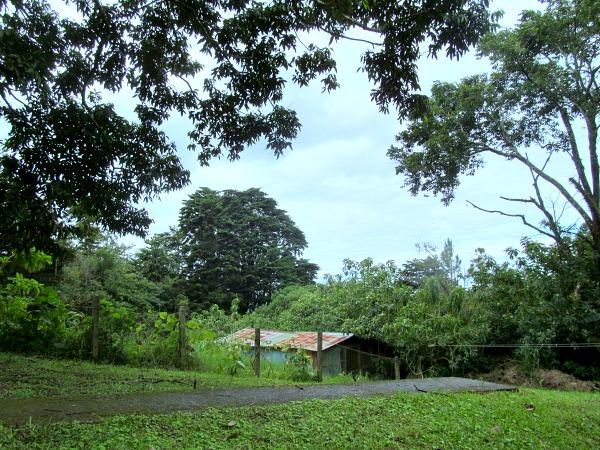 La Colina Lodge Monteverde