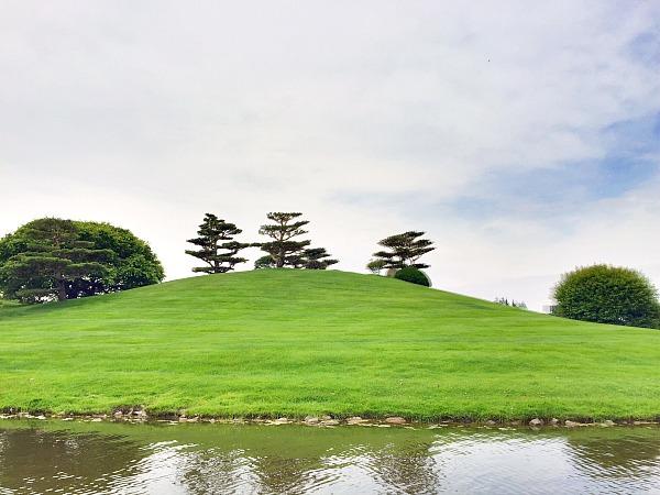 Chicago Botanic Gardens Japanese Island
