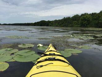 Rock Cut State Park kayaking