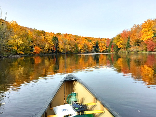 Flambeau fall foliage peak leaf season Wisconsin