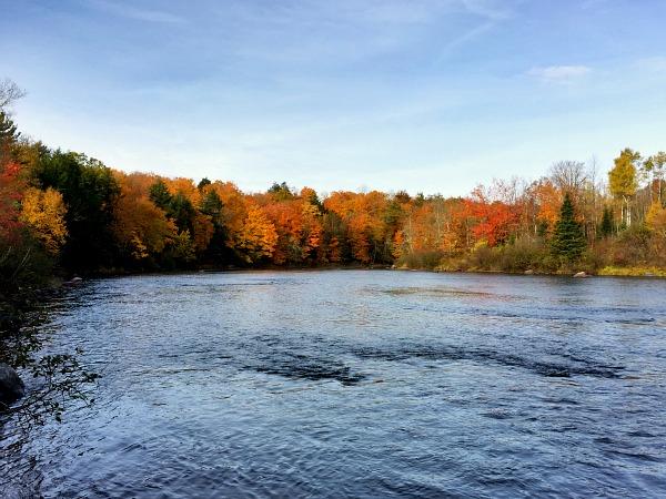 peak leaf season Wisconsin