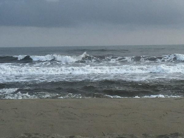 Tayrona surf
