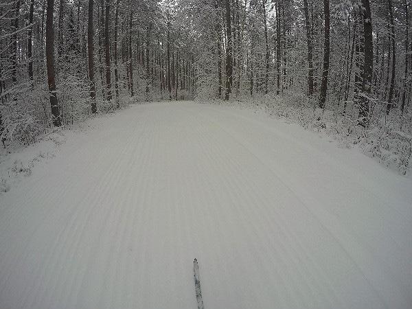 Wisconsin northwoods cross-country skiing
