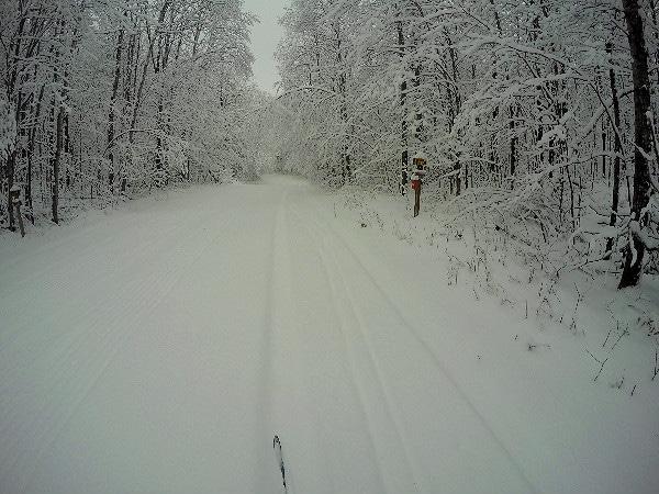 Birkie Nordic skiing