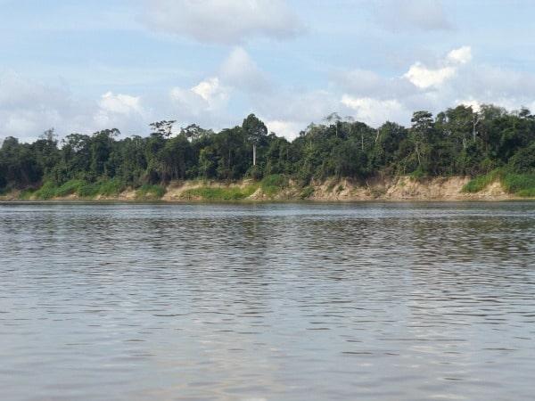 Yavari River dry season