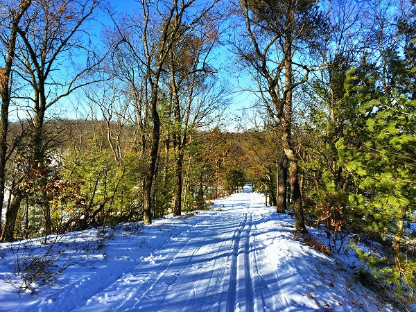Black River State Forest cross-country skiing