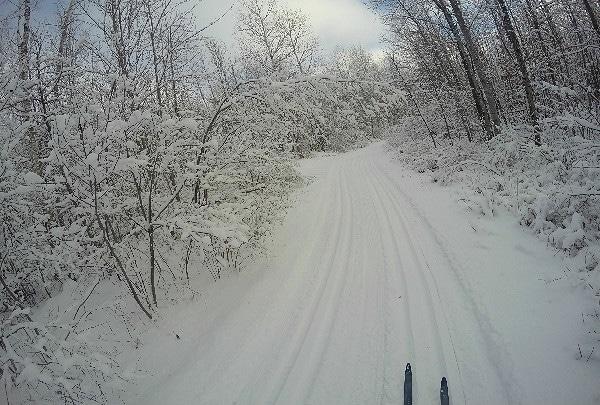 Beaver Brook cross-country ski trails