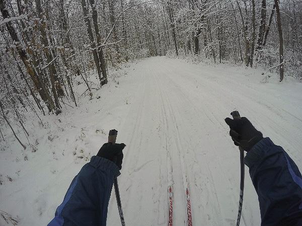 Maddshus skis