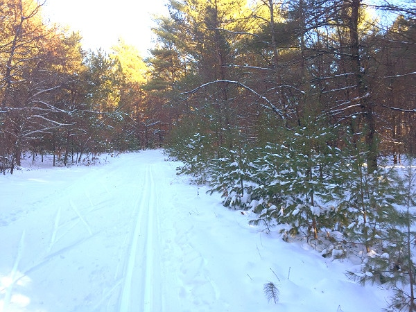 Black River State Forest skiing adventure