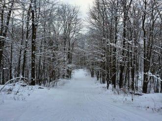Timberland Hills Ski Trails
