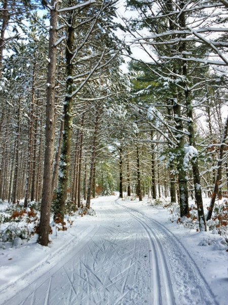 Wisconsin State Parks cross country skiing