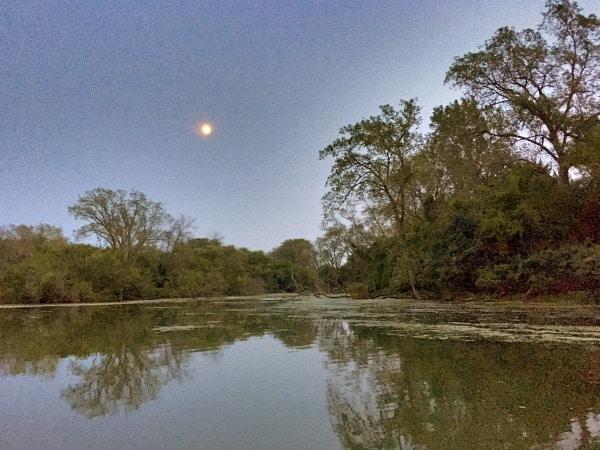 Skokie Lagoons moonlight