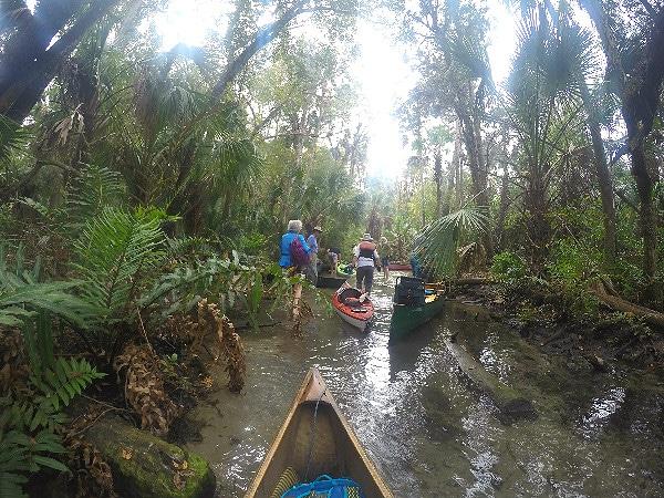 Chassahowitzka River paddling
