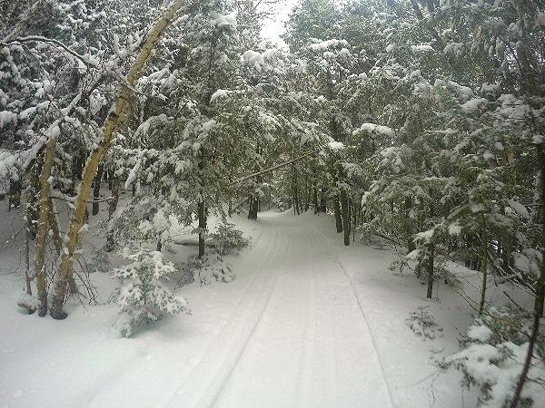 Watersmeet Ski Trails GoPro