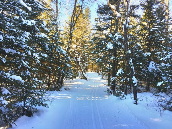 Minocqua Winter Park Nordic Center