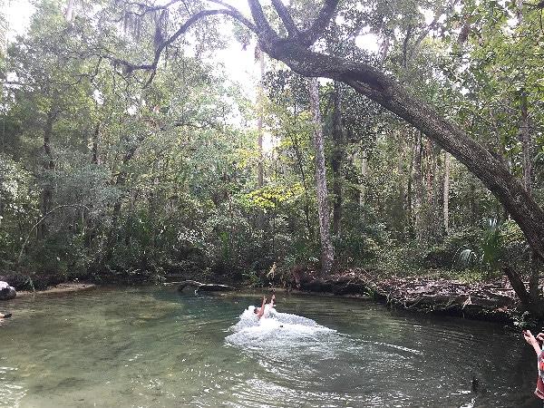 Tarzan fail