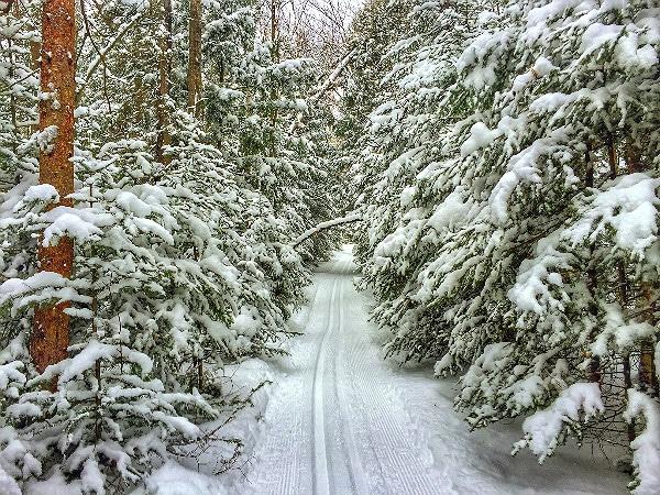 Watersmeet Ski Trails