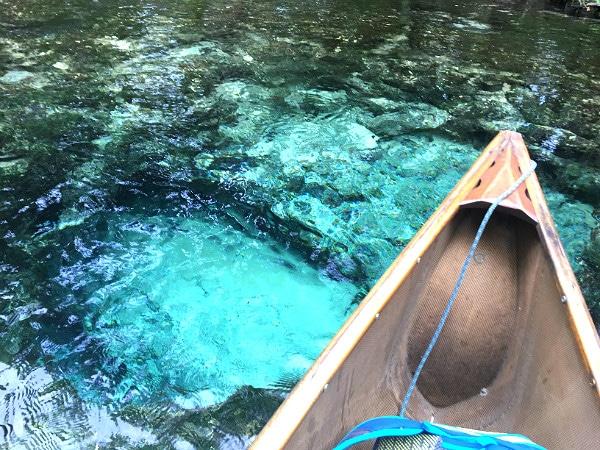 Chassahowitzka River spring