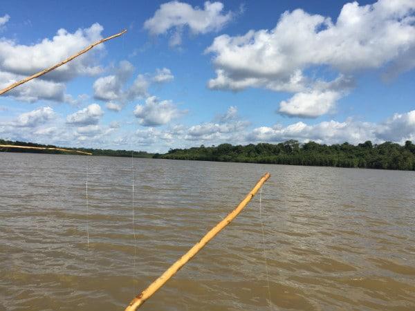 Amazon River piranha fishing