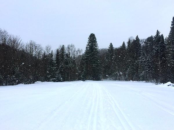 Canada Ski Marathon