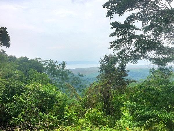Bolita hiking trails
