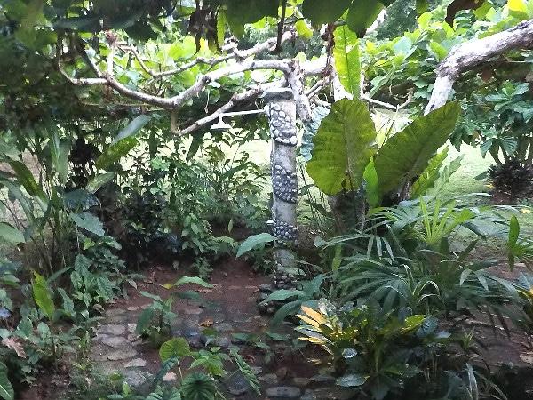 Outdoor shower Osa Rainforest Rentals