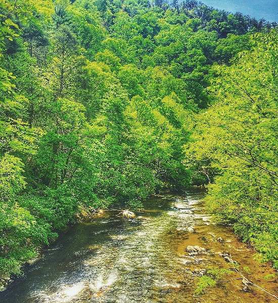 Doe River Valley