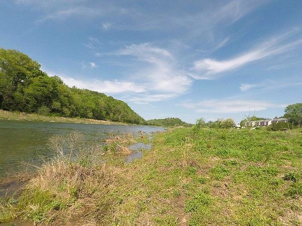 South Holston River Bluff City