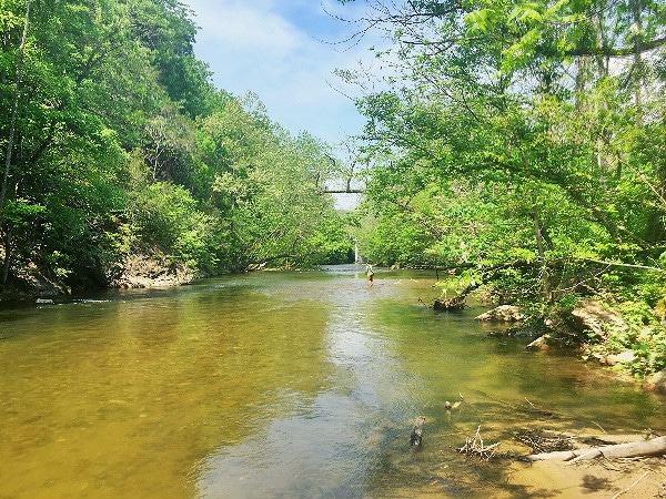 Fishing Doe River Tennessee