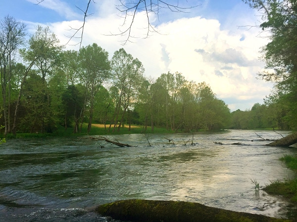 High water Holston River