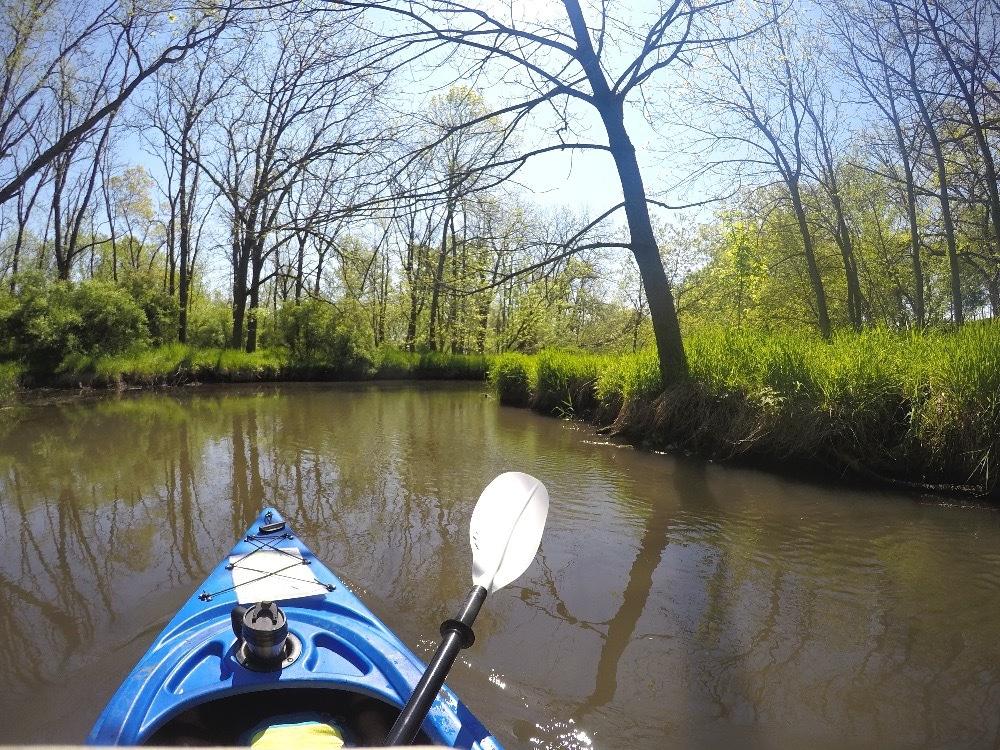 Sugar River kayaking adventure