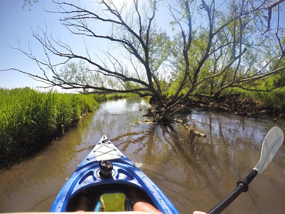 Kayaking logjams