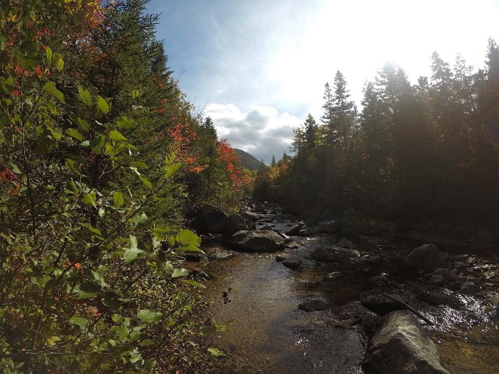 Baxter State Park stream
