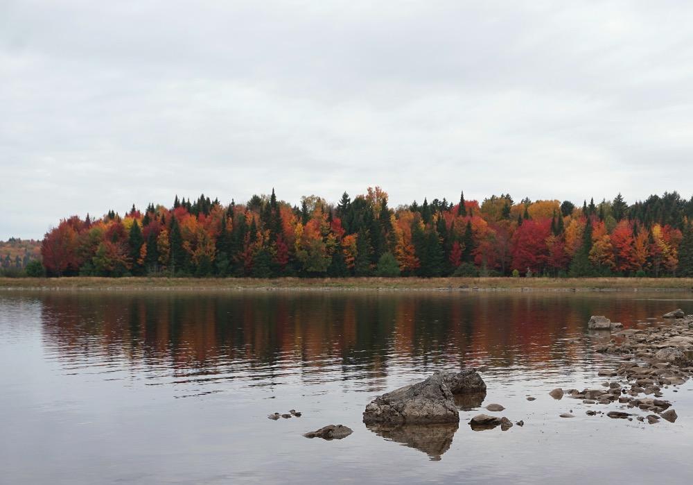 Fall colors Allagash River