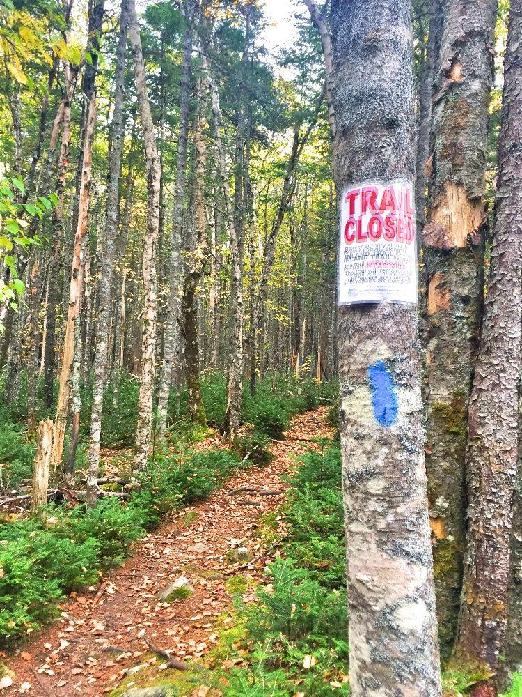 Maine Bold Coast hiking