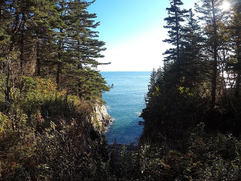 Coastal Trail Bold Coast