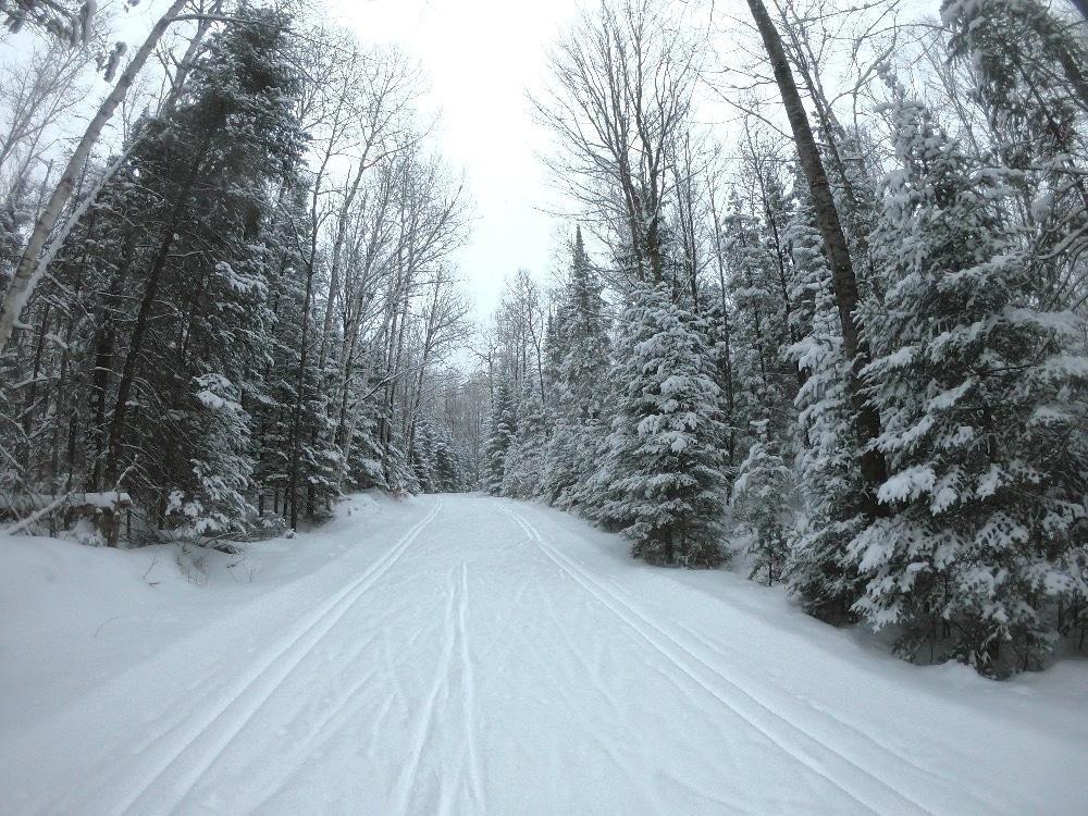 Lakewood cross-country ski trails