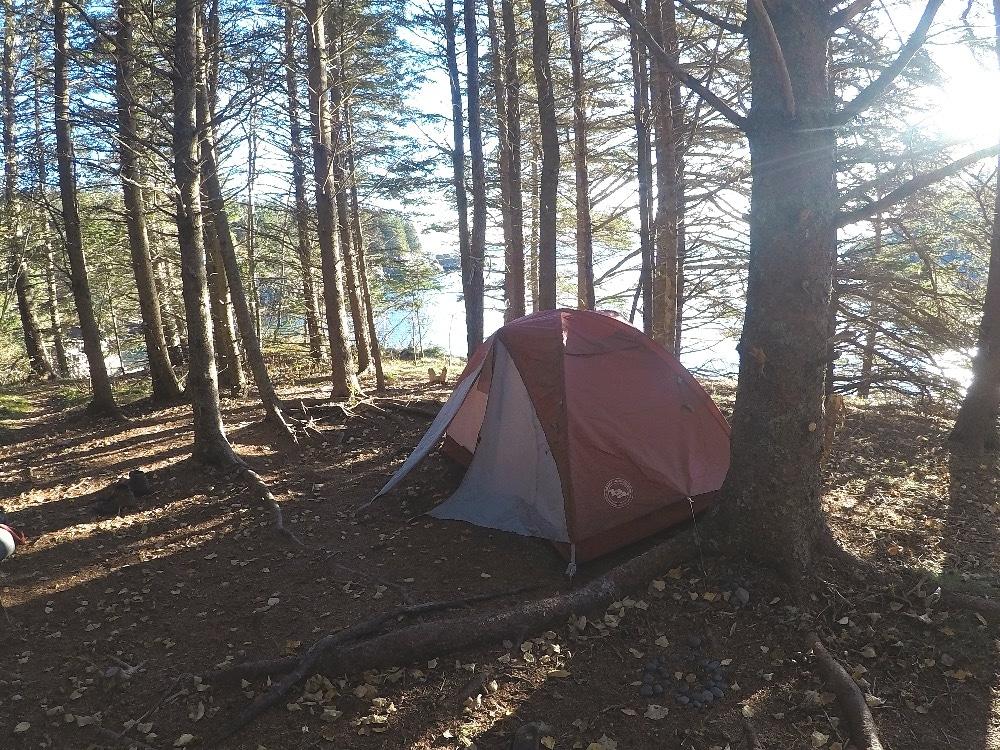 Bold Coast tent camping