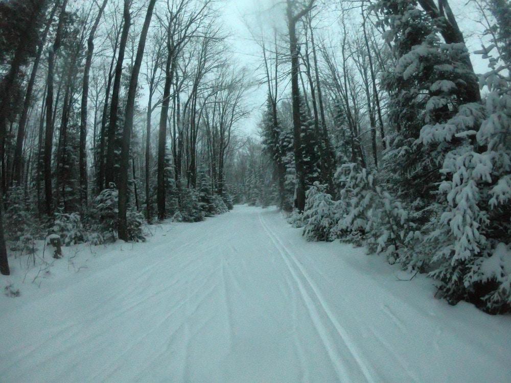 Lakewood cross-country skiing
