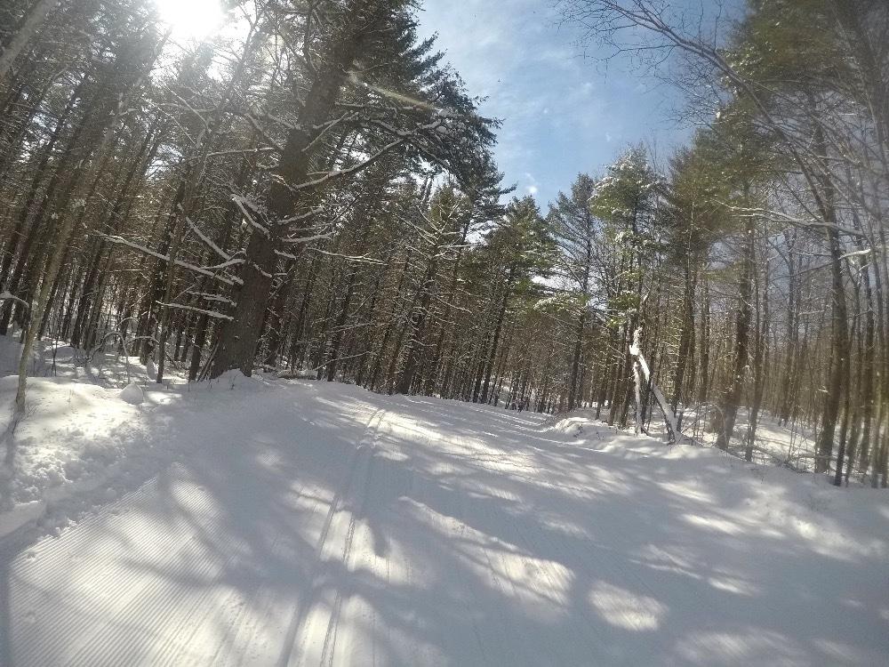 Birkie cross-country skiing