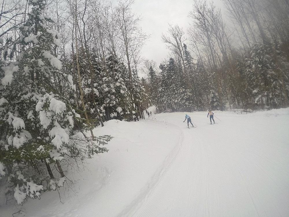 Wisconsin northwoods winter