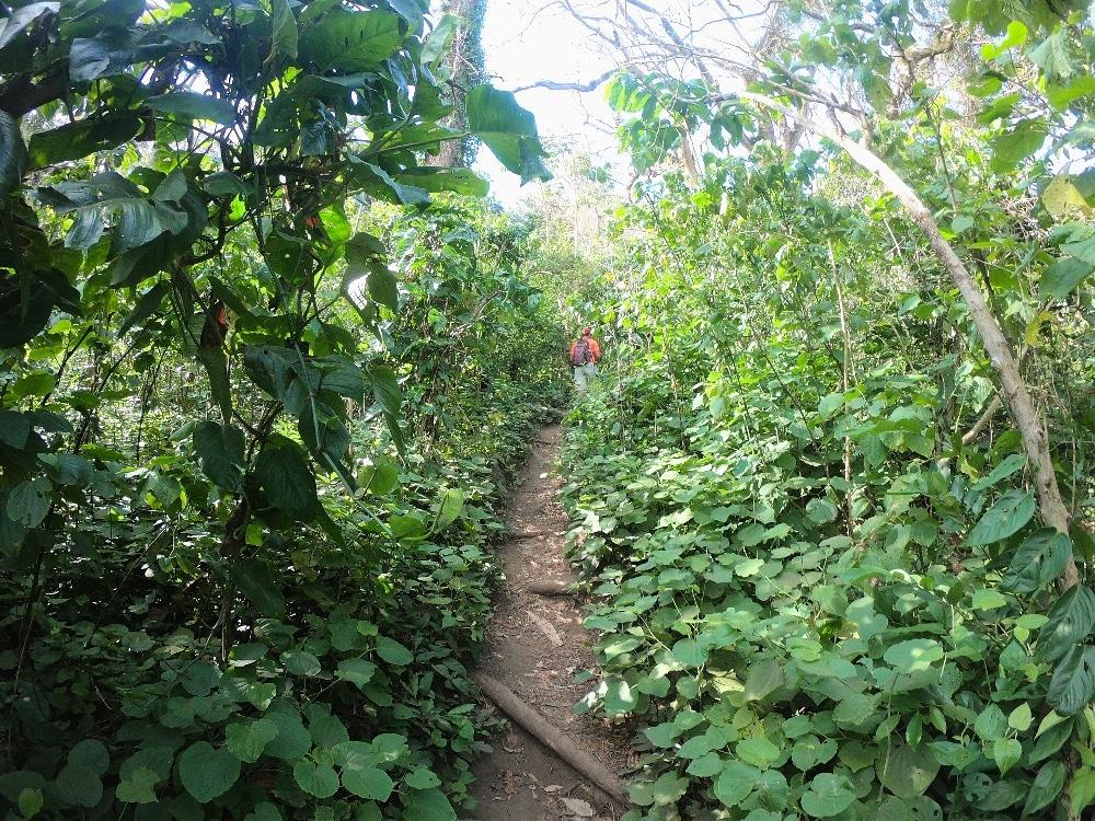 Nicaragua volcano hiking