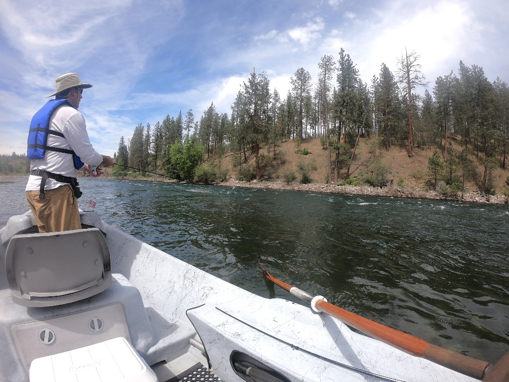 Spokane River fly fishing