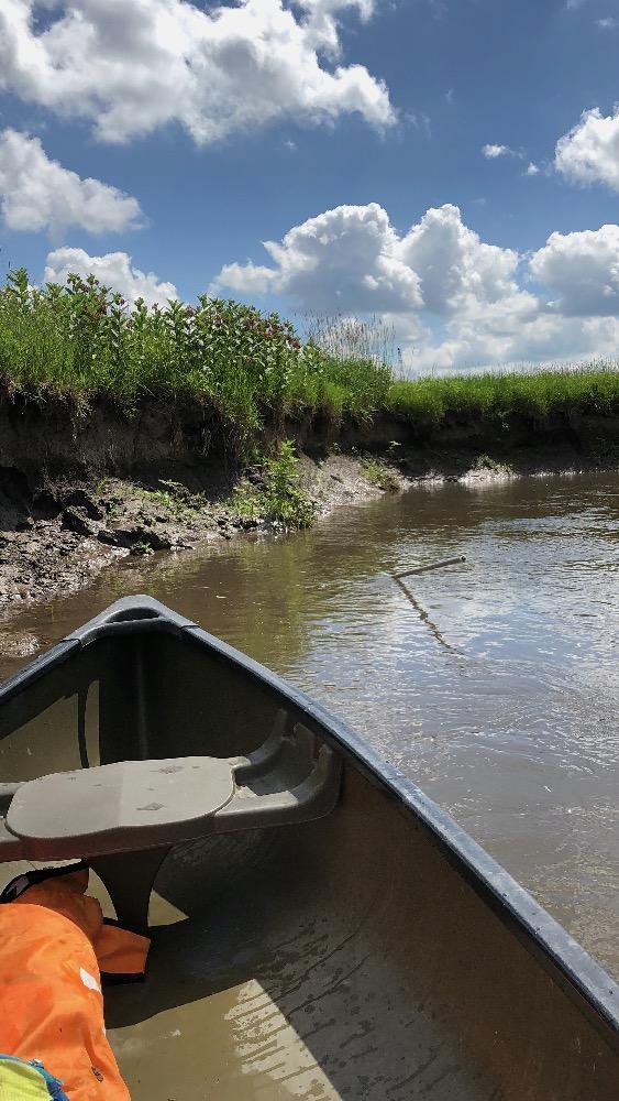 Canoe pole stuck mud