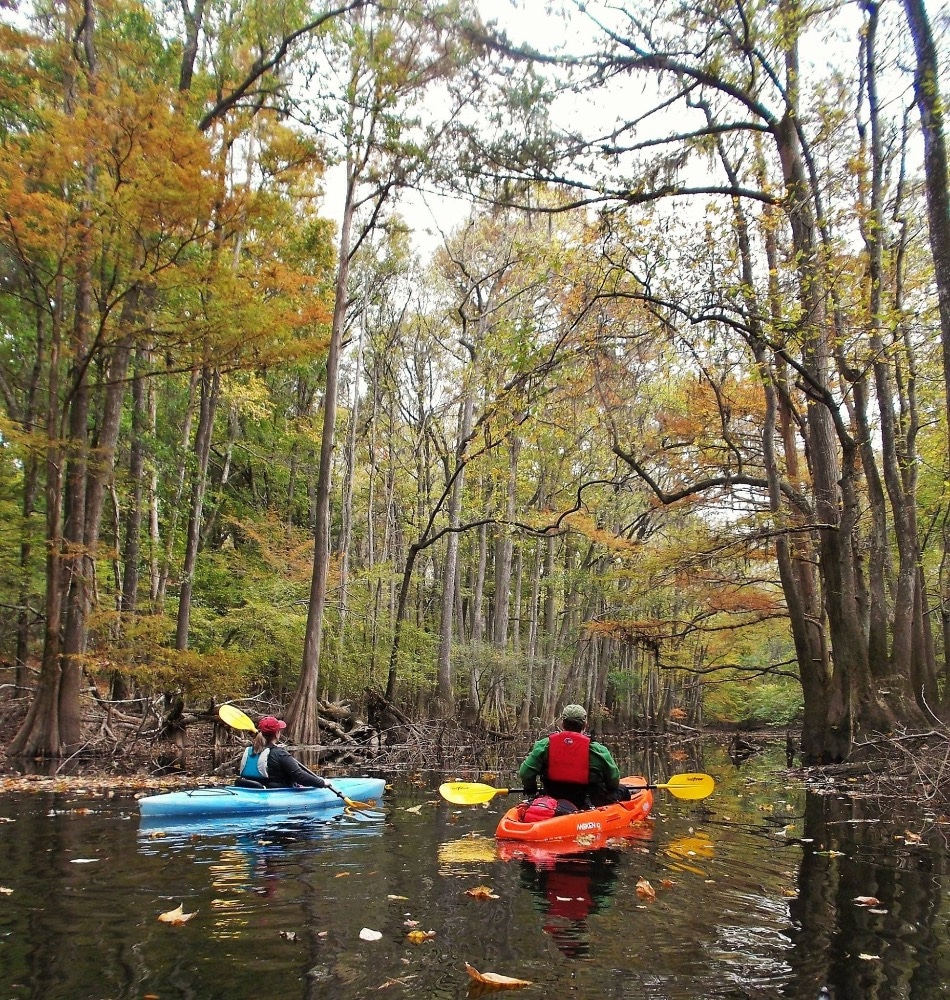 Kayakers in Congaree National Park