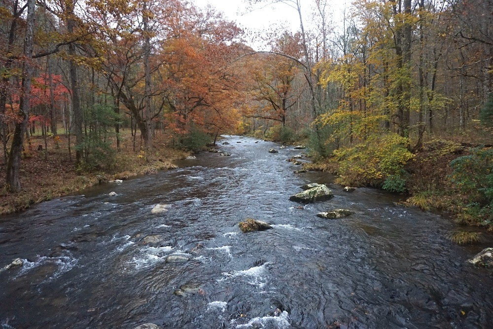 Hazel Creek Smoky Mountains