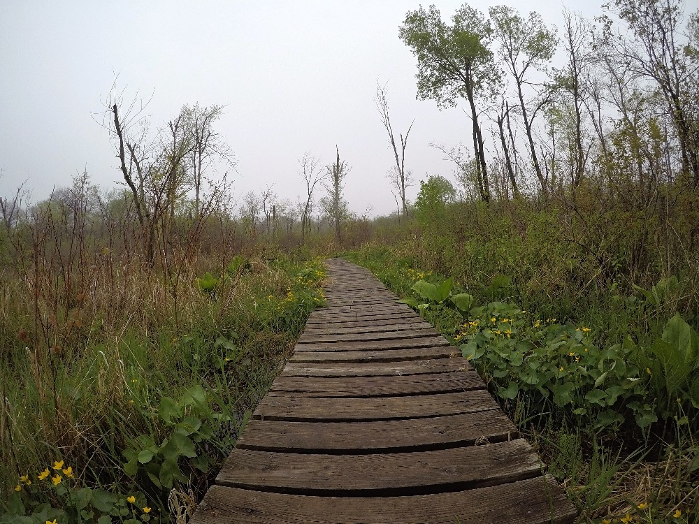 Scuppernong Springs Nature Trail