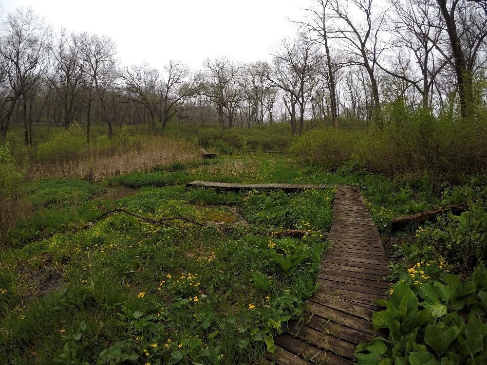 Scuppernong Springs Kettle Moraine Wisconsin