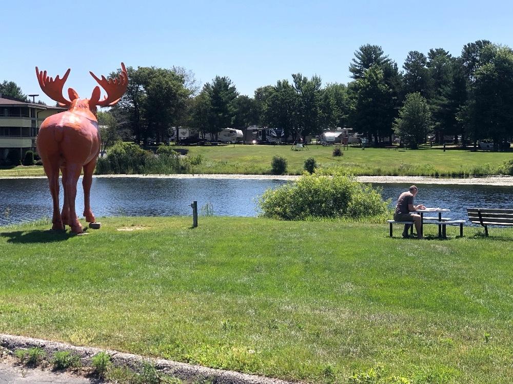 Scott Bull Moose Patrol